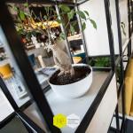 michele-citro-retail-design-cult-mercato-san-severino-37
